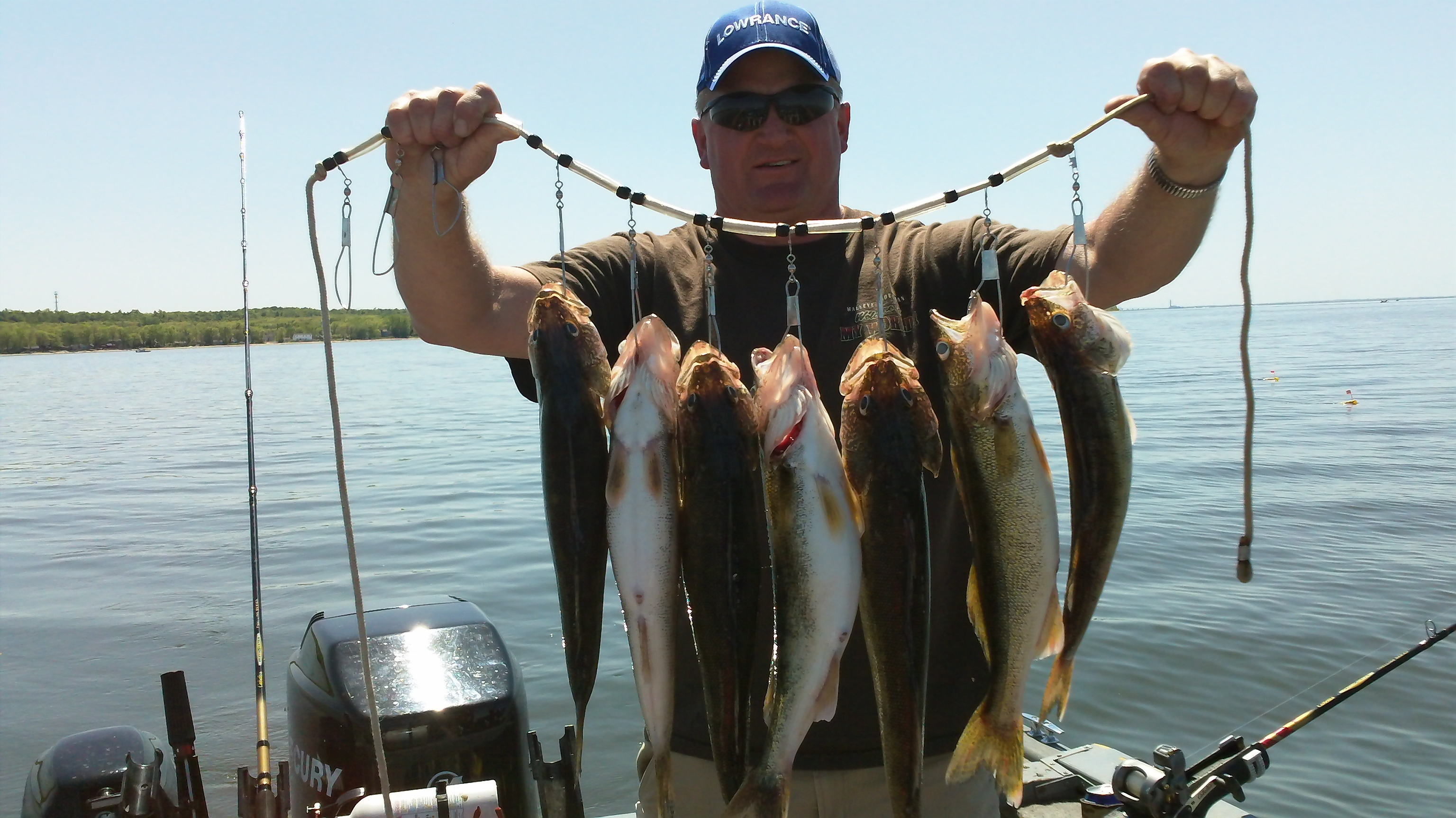 Jim Smit with a stringer of Green bay walleyes caught on custom spinner rigs